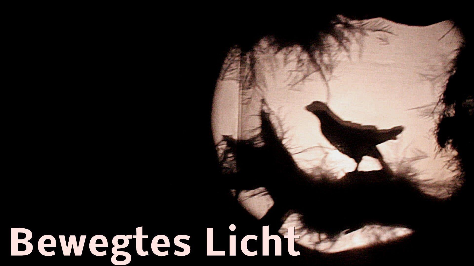 Workshop Schattentheater #06: Bewegtes Licht