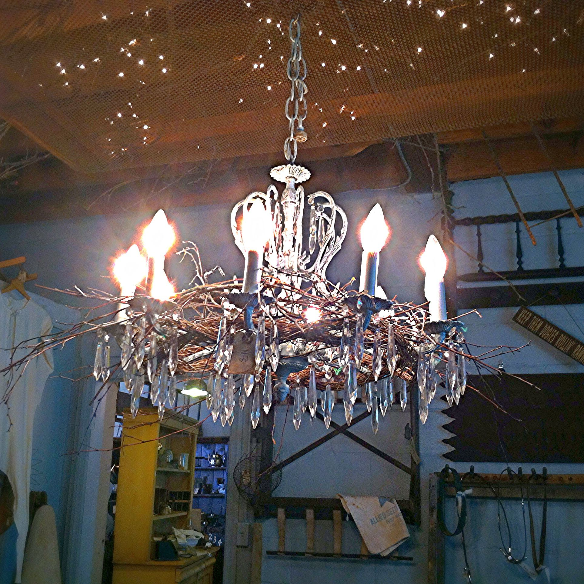 Gorgeous chandelier with a nest at romantique boutique in erie pa light shades lamp