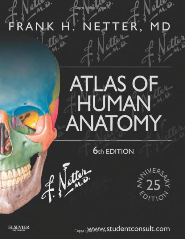 Atlas Of Human Anatomy 6th Anniversary Edition By Frank H Netter