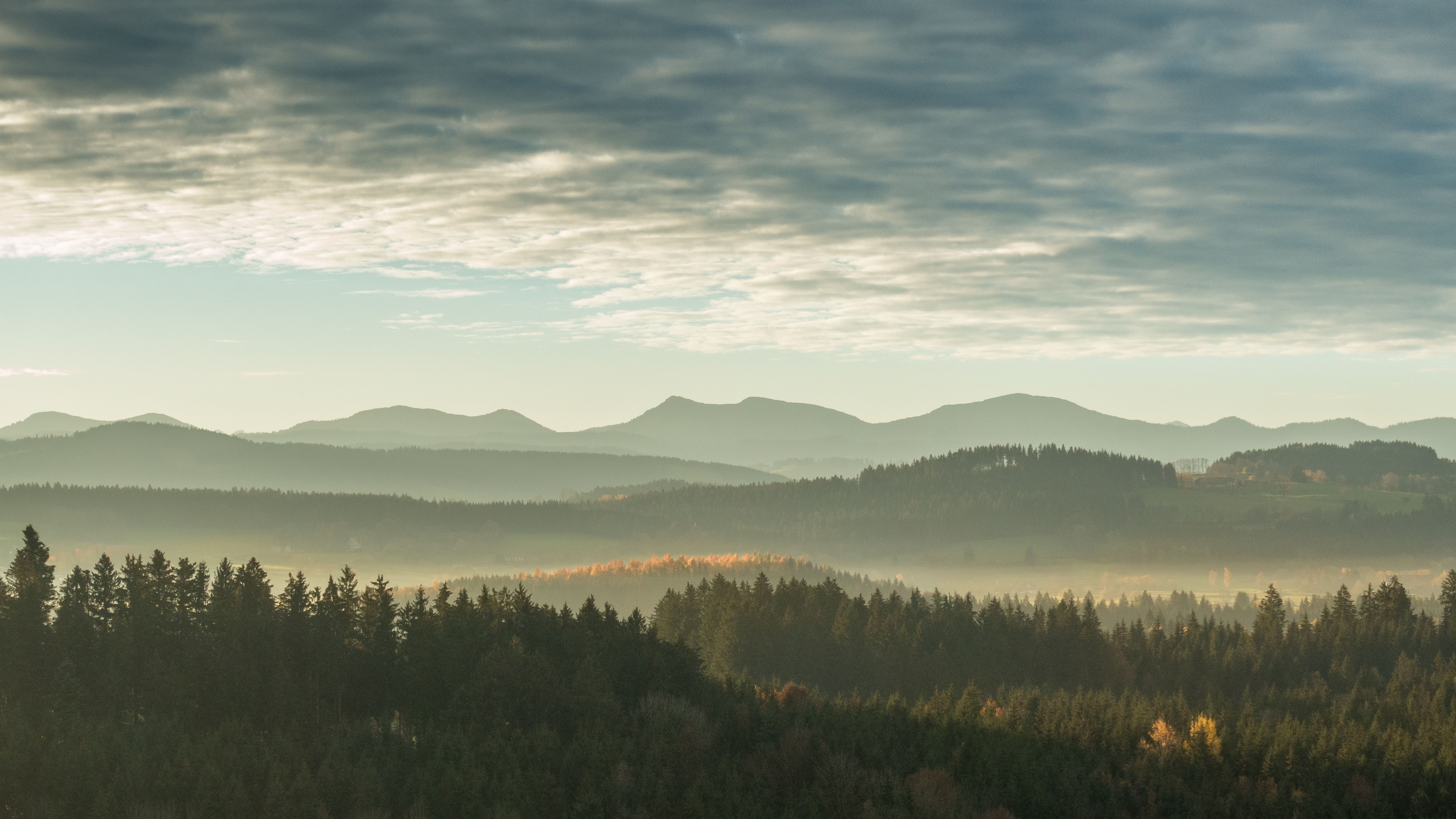 Green Woods And Low Mountains On The Horizon Under An Overcast Sky Landscape Nature Forest Pictures