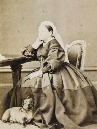 Queen Victoria With A Dachshund Dachshund Lovers Dachshund