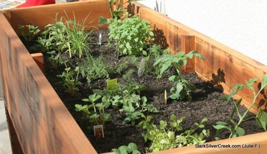 These Are Raised Bed Like The Ones My Mom Has In Idaho