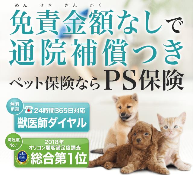 ランキング入賞 受賞多数 ペット保険 ペット 受賞