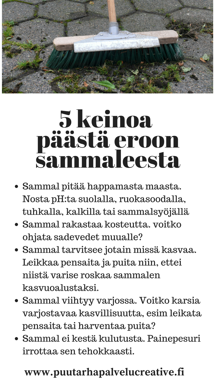 Sammal väärässä paikassa tekee sotkuisen vaikutelman. Tässä ohjeita sen kurissa pitämiseen. www.puutarhapalvelucreative.fi