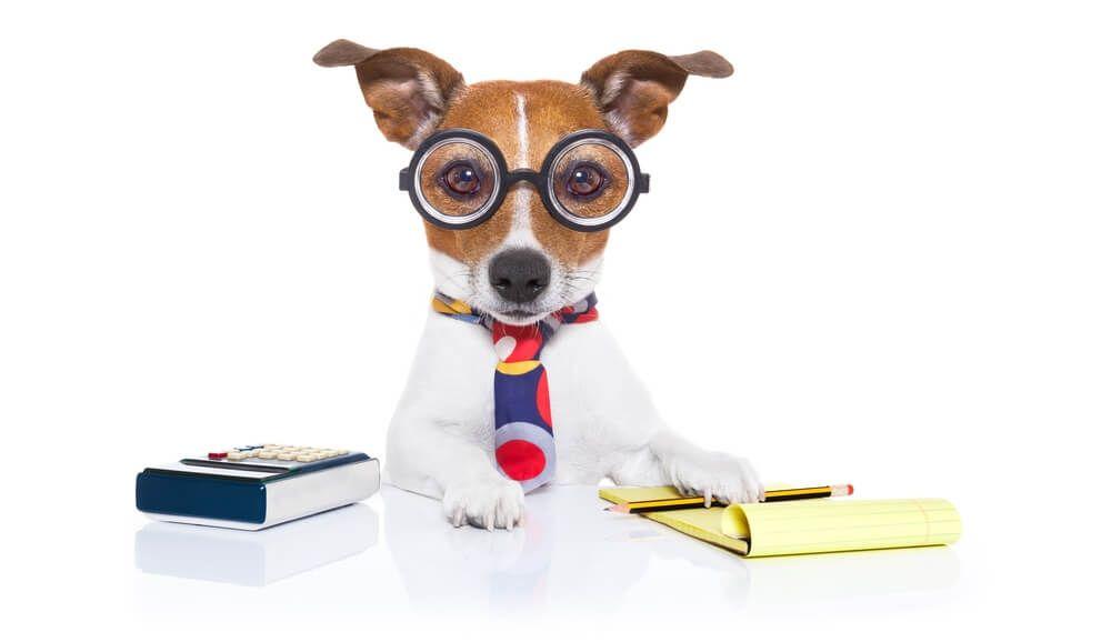 Dog Food Calculator Dog Food Advisor Dog Food Advisor Dog