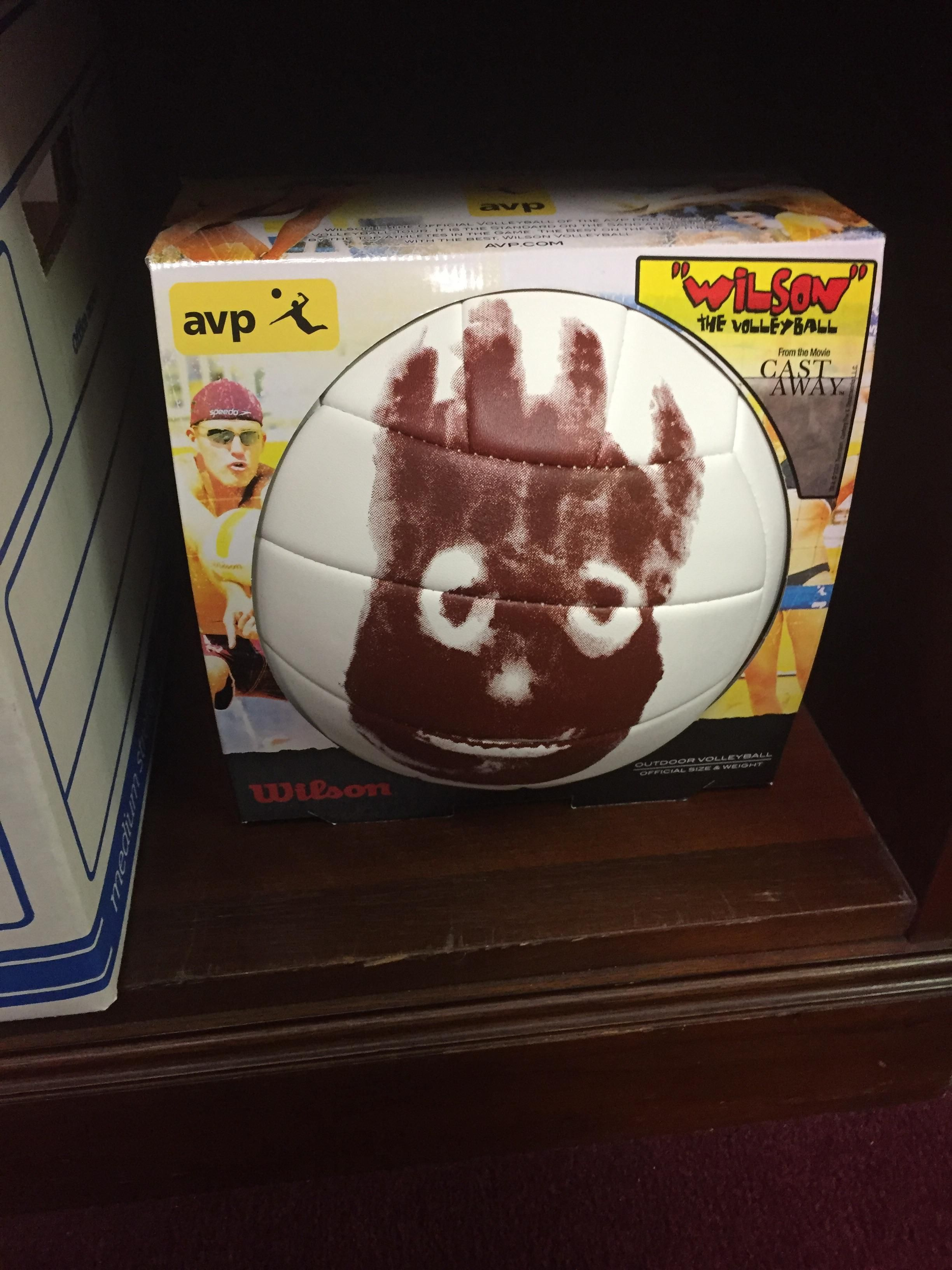 Found Wilson From Castaway In My Office After All These Years Funny Animals After All These Years Pets