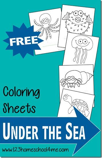 FREE Ocean Animals Coloring Pages | Toddler preschool, Ocean and ...