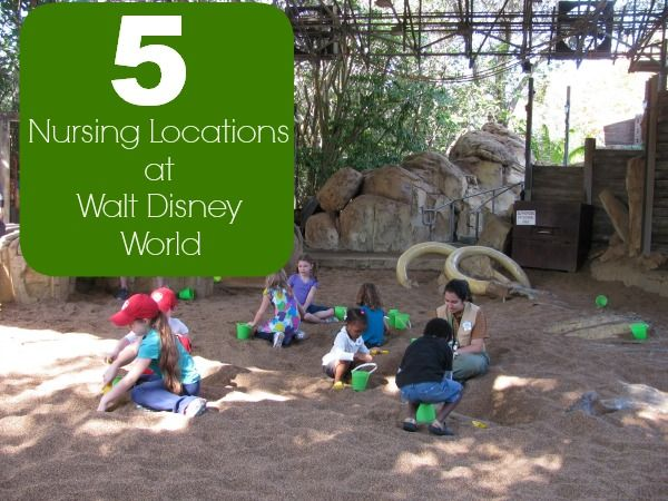 5 Great Nursing Locations at Walt Disney World