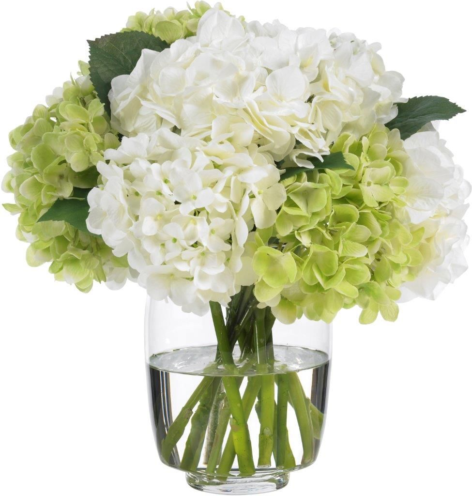 Hydrangea Arrangements: White Hydrangea - Google Search