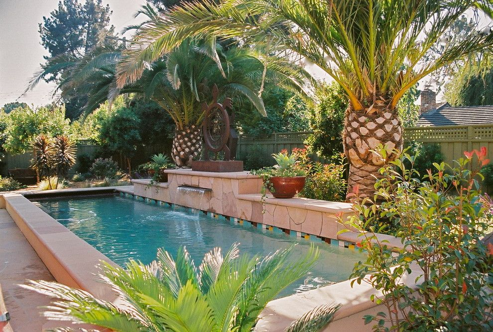 Breathtaking Banana Tree Decorating Ideas For Stunning Pool Tropical Design  Ideas With Canary Island Palm Lap Pool Palm Trees Pool Coping Pool Tile Water  « ... Part 44