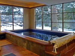 Endless Pool, Swimming Pool, Water Exercise, Indoor Pool, Swim Spa ...