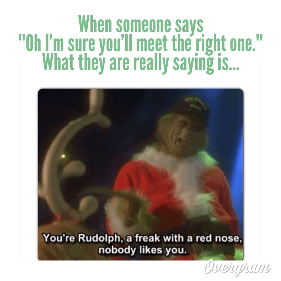 Oh The Singleness Ness Christmas Quotes Funny Funny Christmas Movies The Grinch Movie