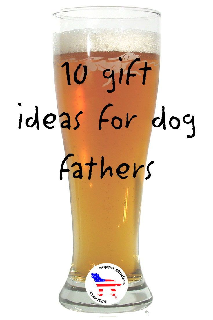 10 gift ideas for dog fathers day dog lover gifts