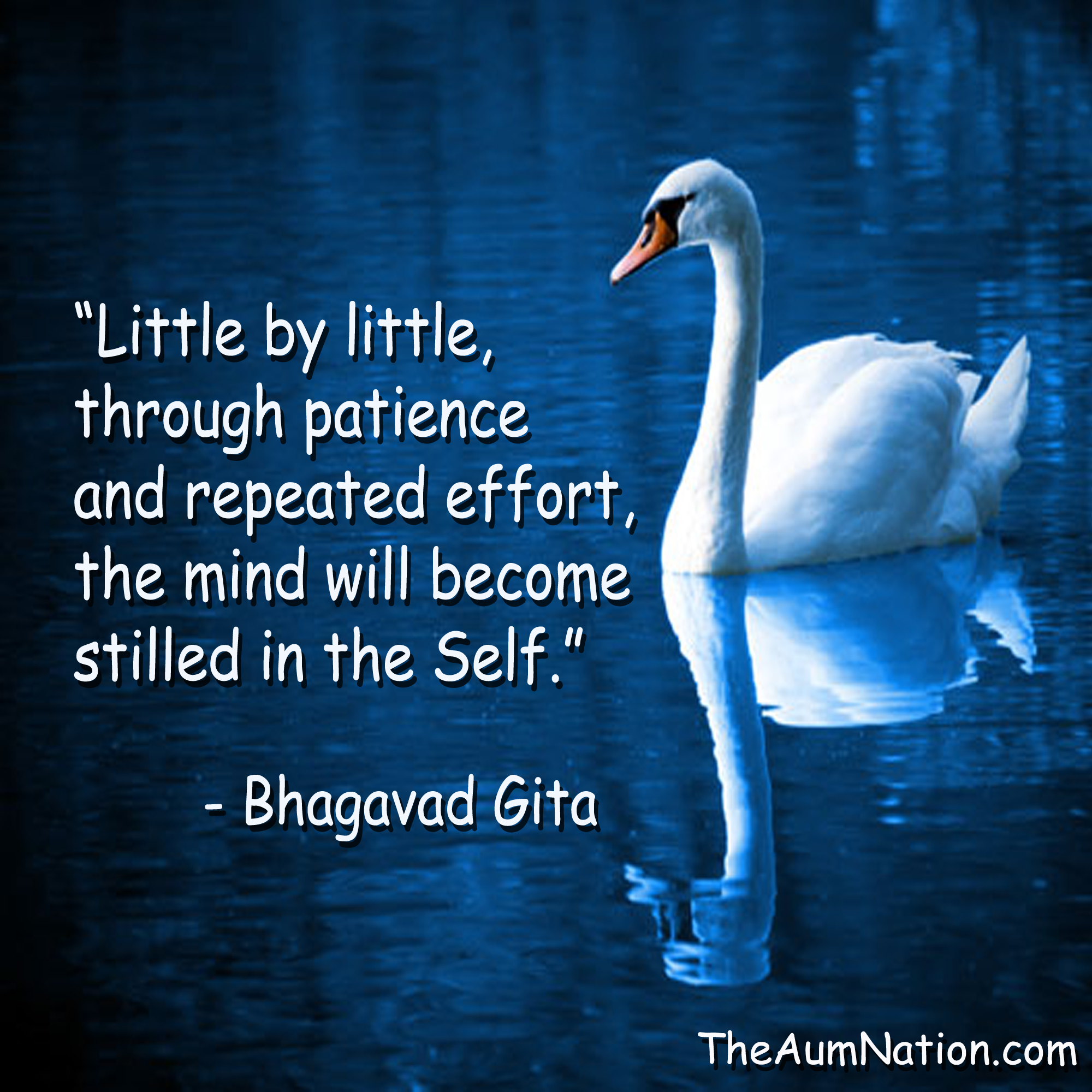 """LIttle By Little Through Patience And Repeated Effort"