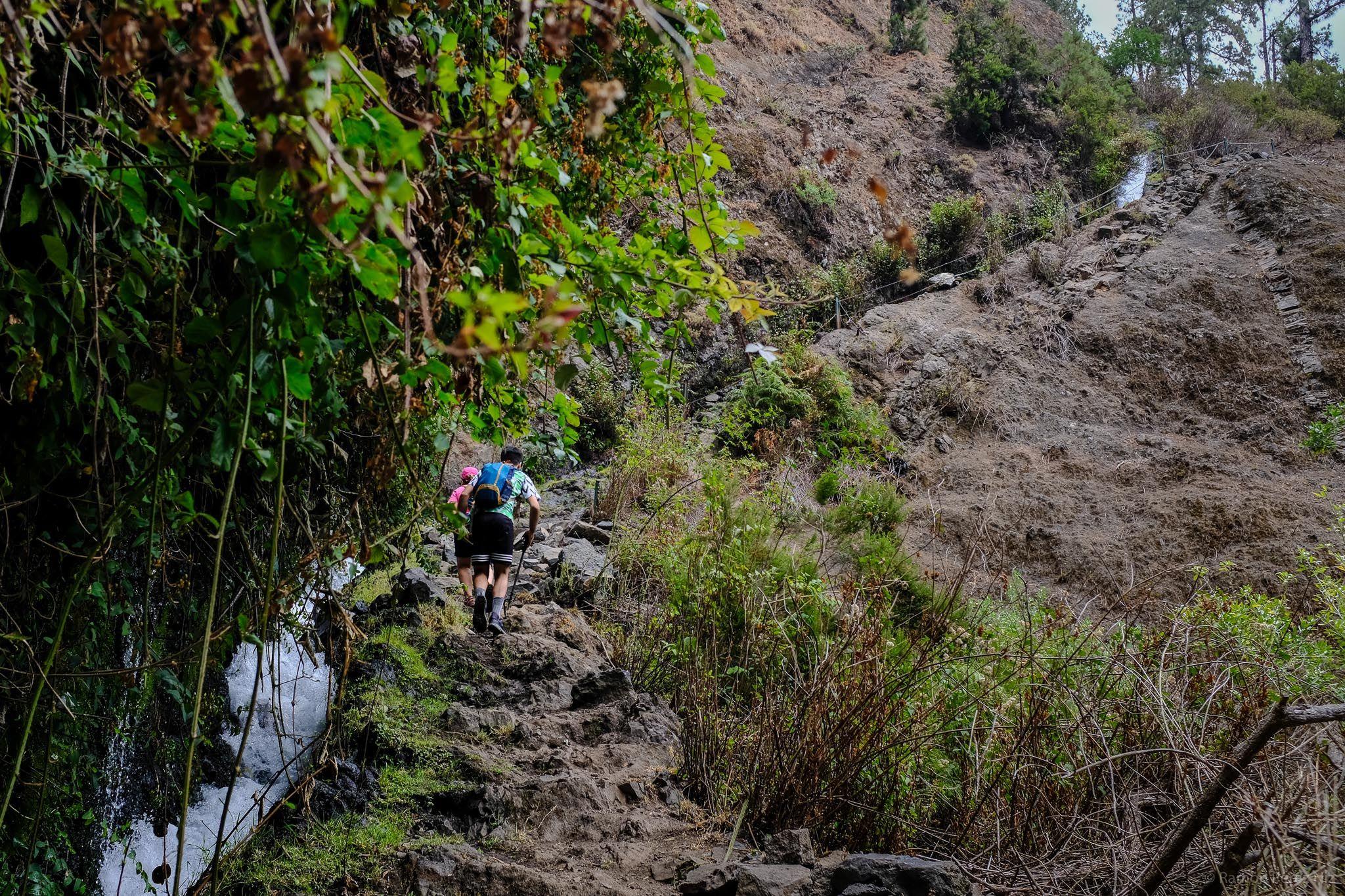 Ruta De Los Nacientes De Marcos Y Cordero Lanzarote 3 En Fotografía En 2020 Rutas Parques Naturales Cascadas