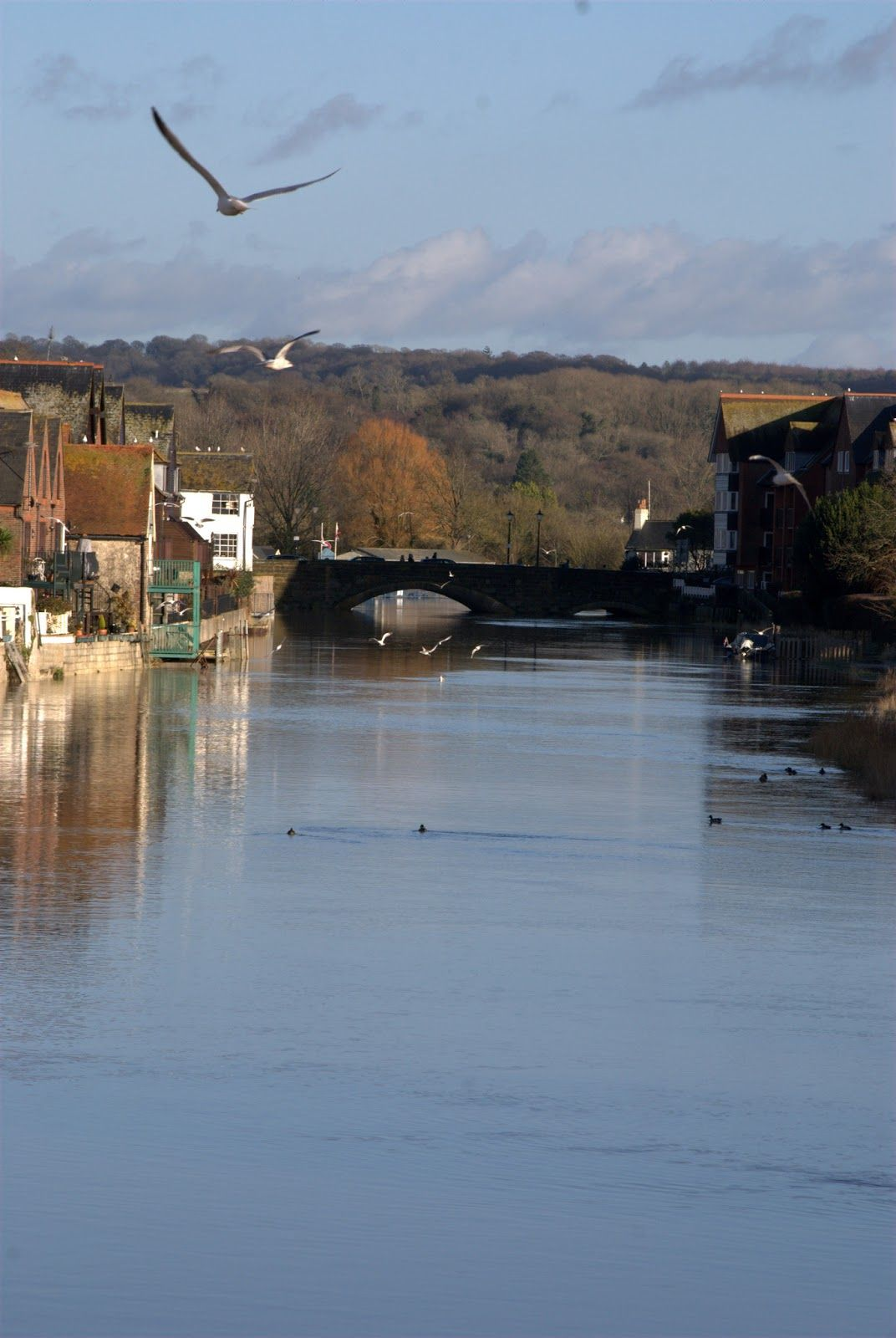Arundel Eccentrics: Happy New Year, Giving up the Night Duty and walking in Arundel on New Years Day