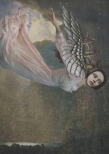 Angel | Sarah Jarrett