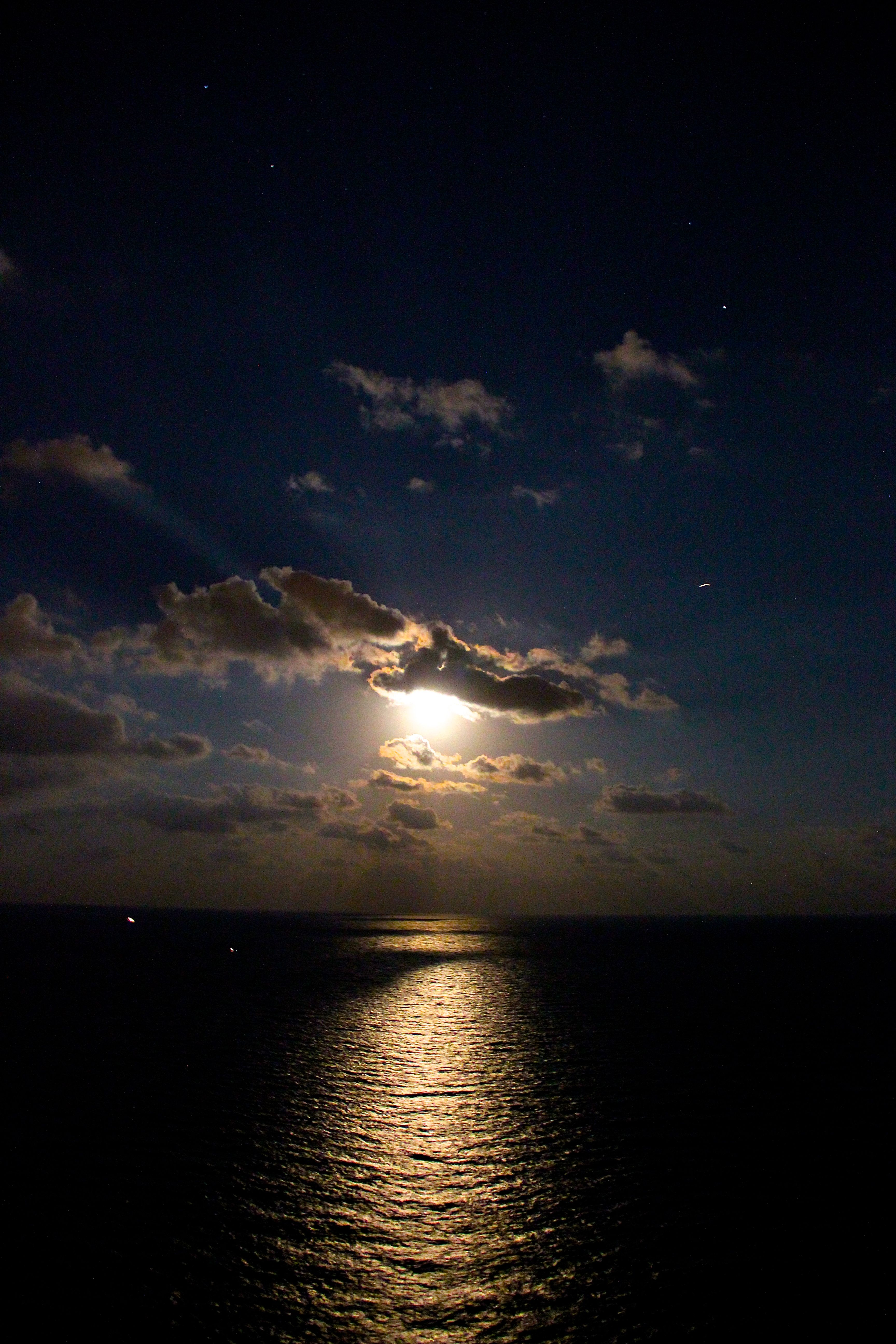 Florida Night Scenery Full Moon Pictures Shoot The Moon