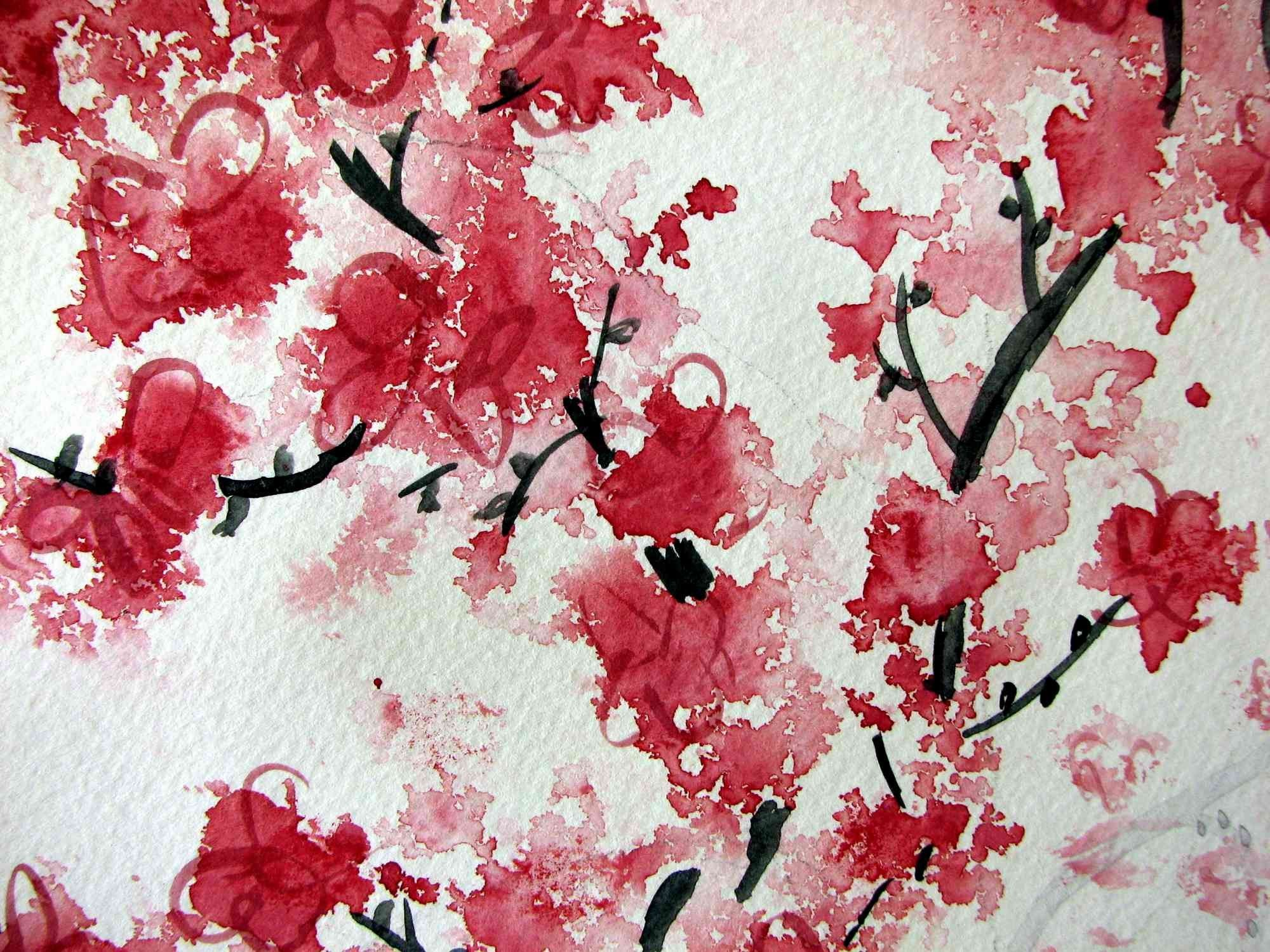 Cherry Blossom High Resolution Wallpapers Widescreen