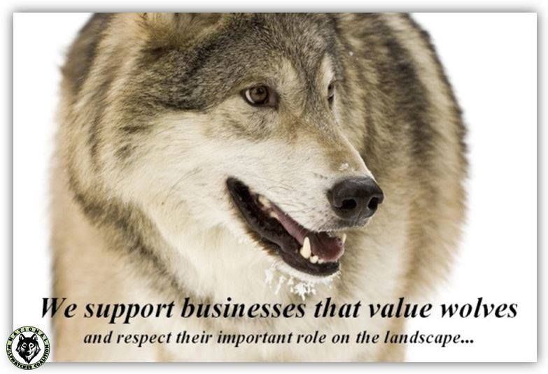 Support Wolf Recovery