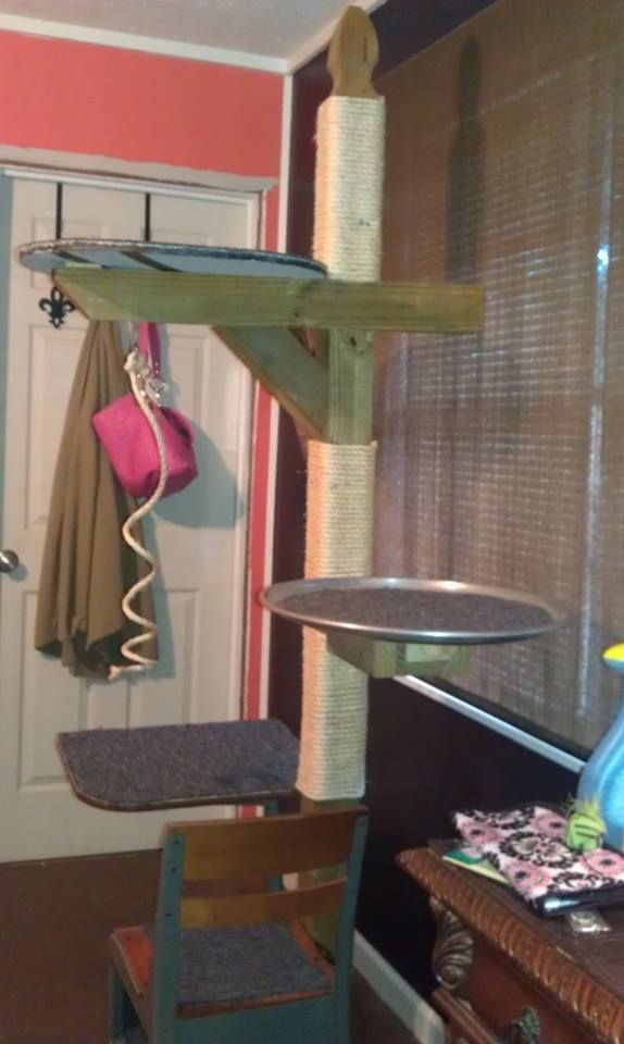 """DIY/repurposed item cat tree.  Base is made from a sturdy metal and wood child's school desk, post is a mailbox post, """"branches"""" are made from a large metal oval serving tray and a leftover piece of wood.  All horizontal surfaces are covered with remnant pieces of indoor/outdoor carpet; and the post is wrapped with rope for those clawing moments.  Tree is for sale for $150"""