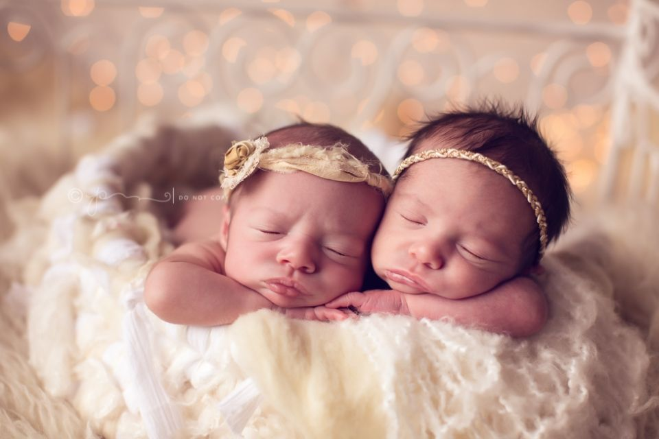 Twin girls nashville tennessees premier newborn twin photographer nashville baby photographer