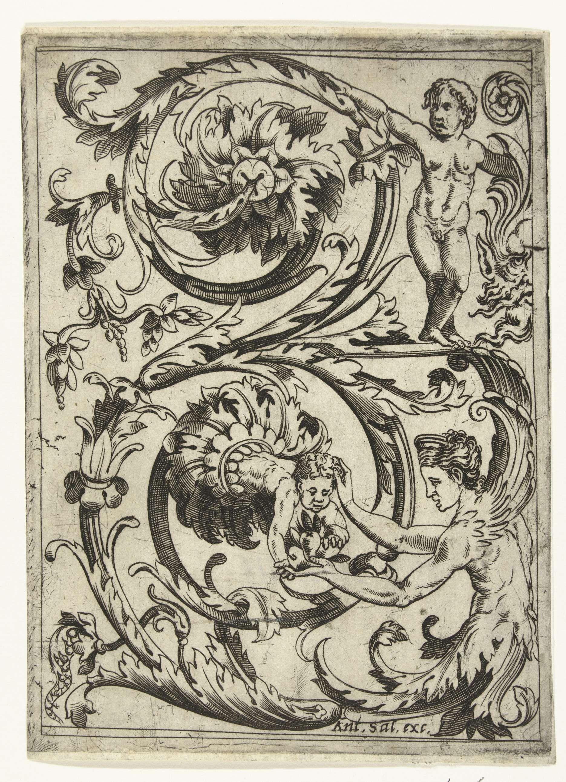 Acanthus Ornament Antonio Salamanca 1490 - 1562