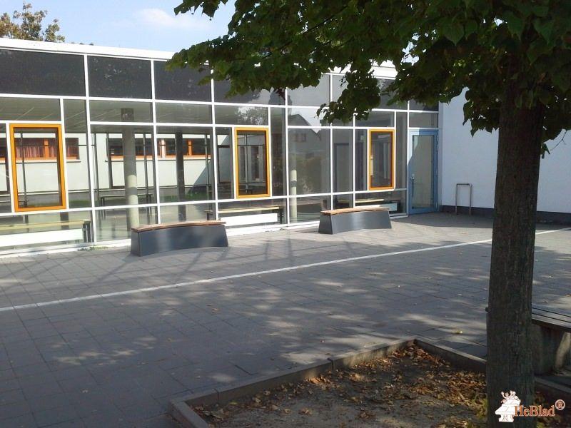 Betonbank DeLuxe Antraciet Ovaal bij Friedrich-Ebert-Schule / Haupt-und Realschule in Mühlheim am Main