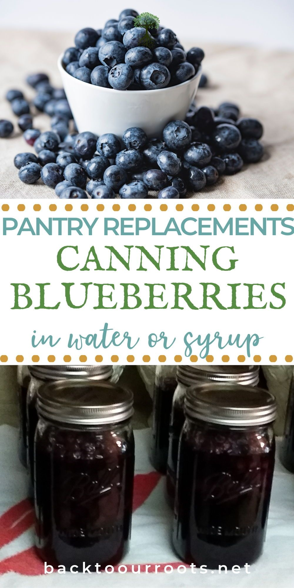 Canning blueberries amazing blueberry goodness in a jar