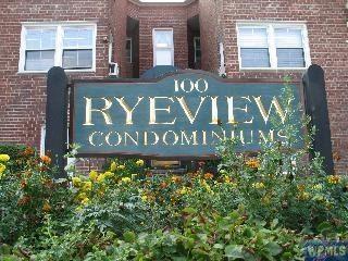 Rye View Iniums 100 Theodore Freumd New York