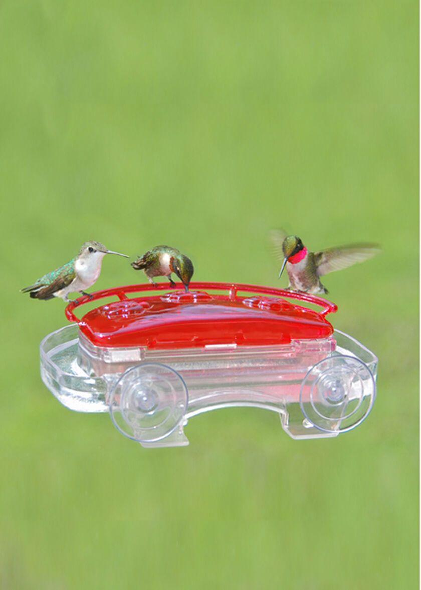 Window Hummingbird Feeder with Suction Cups Gardeners