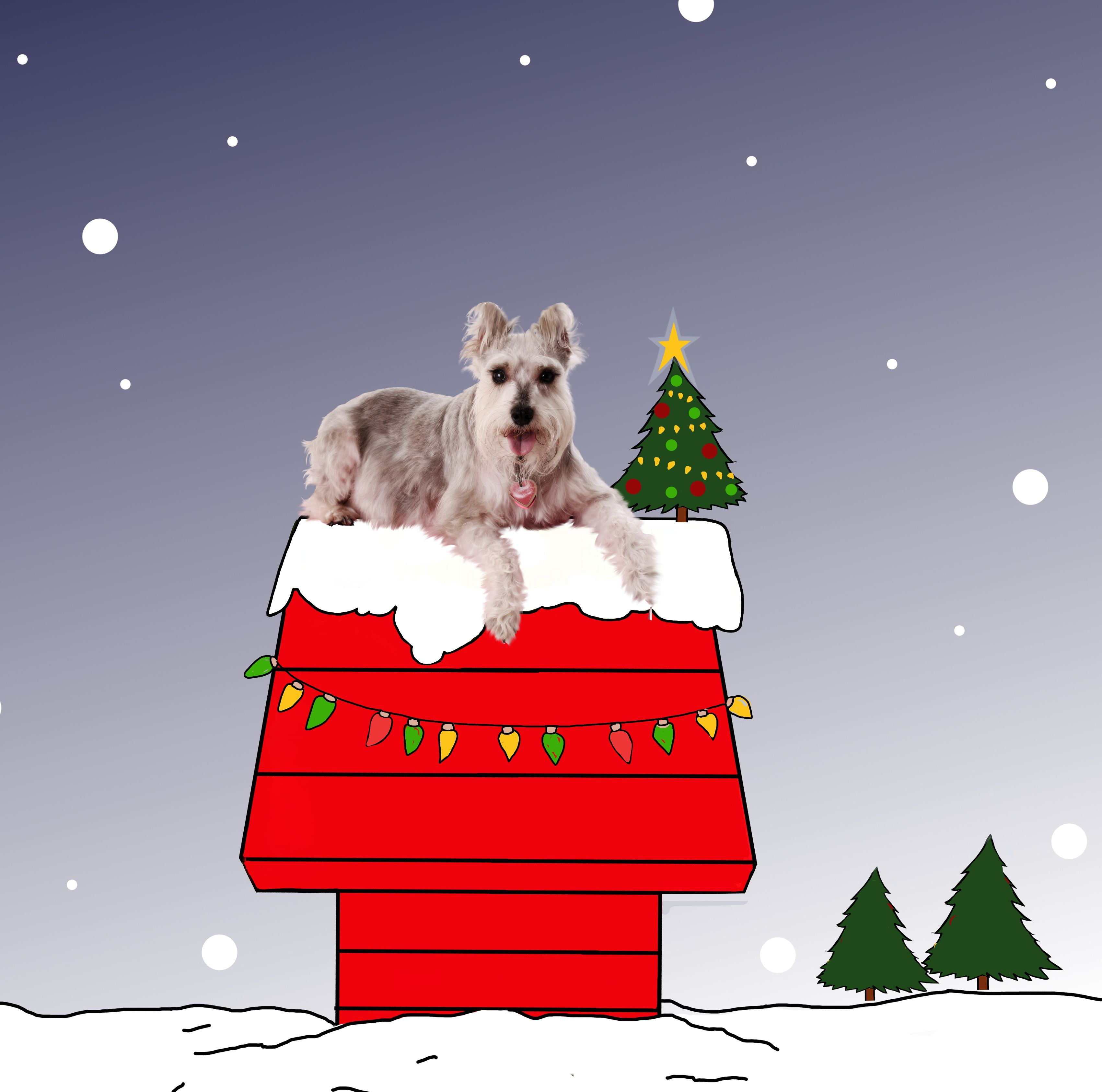 Snoopy peanuts christmas with Gracie (drawn by moi!)