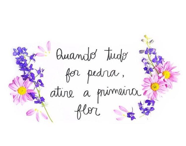 Resultado de imagem para flores alegres tumblr