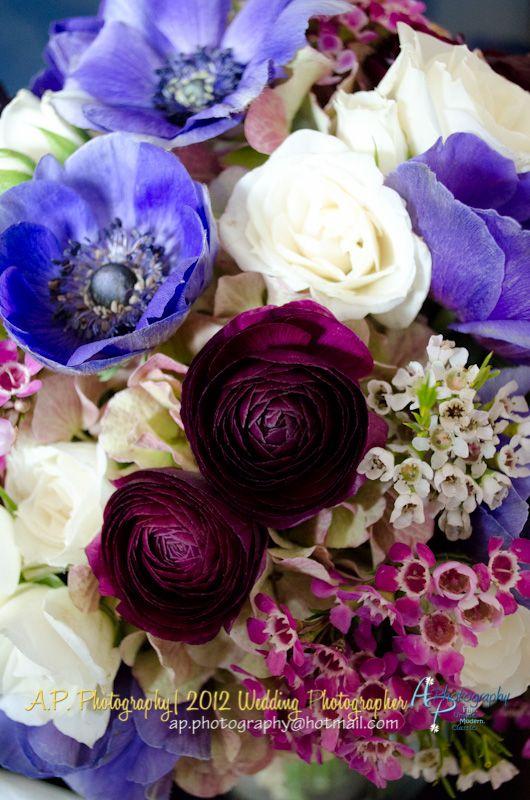 www.apphotographymd.com Sarah&Andrew   Married, Tidewater Inn, Easton, Maryland  Beautiful flowers! Monterrey Farms, Easton MD