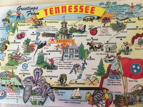 Vintage Tennessee State Post Card in 2019 | Products | Tennessee ...