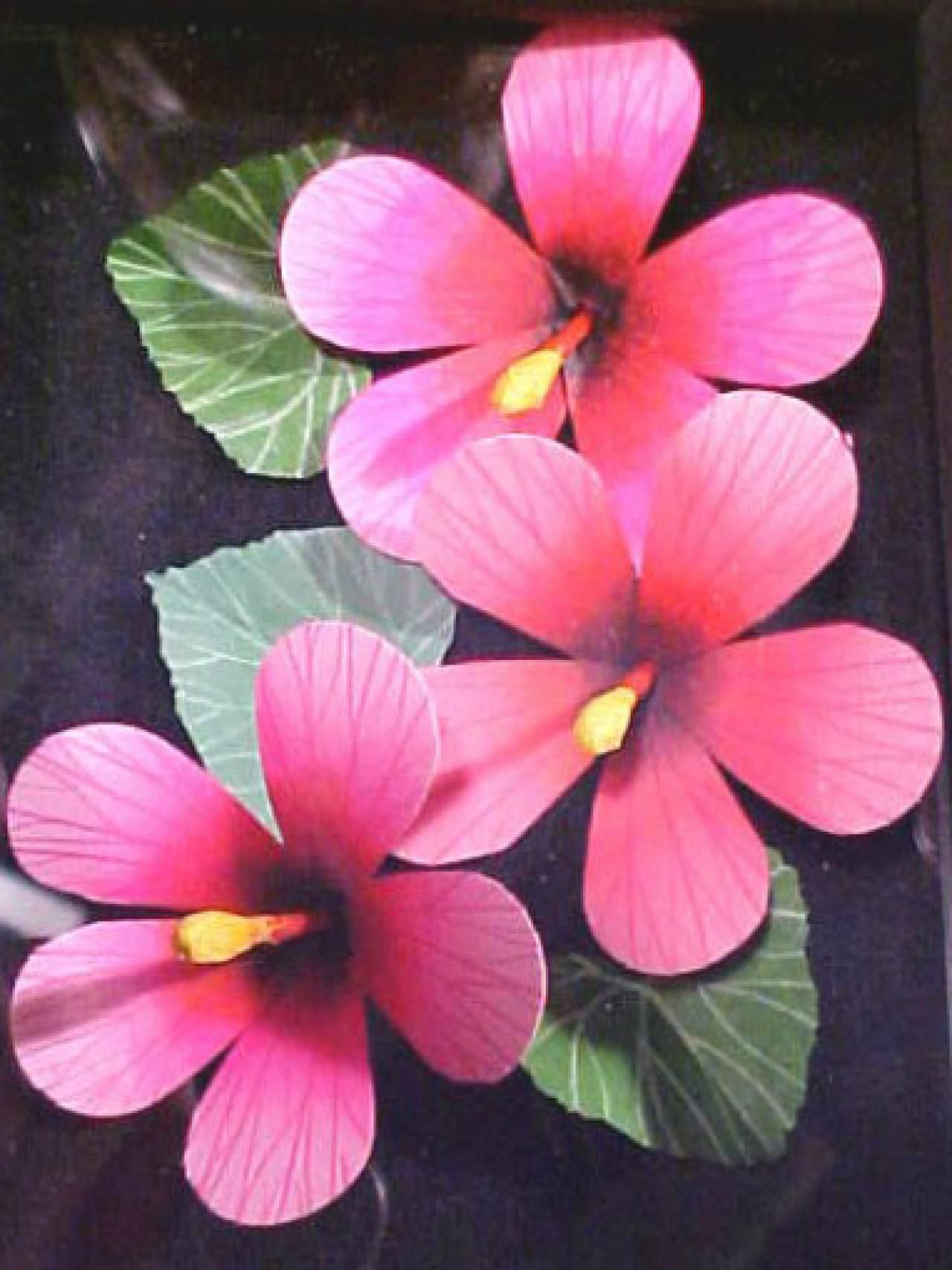 3d flower template google search paper flowers pinterest create three dimensional flowers with paper hibiscus flowers decorating home garden television izmirmasajfo Gallery