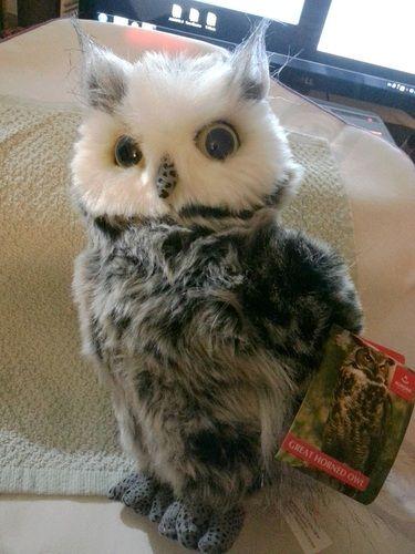 "Amazon.com : Aurora World 9"" Barney the Plush Great Horned Owl : Plush Animal Toys : Toys & Games"