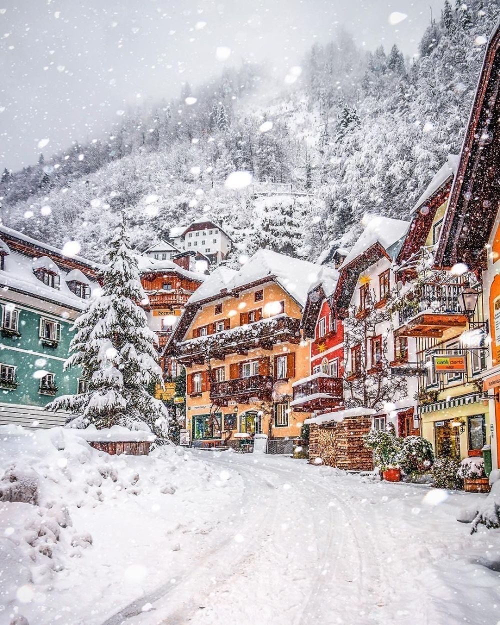 what to do in austria in winter
