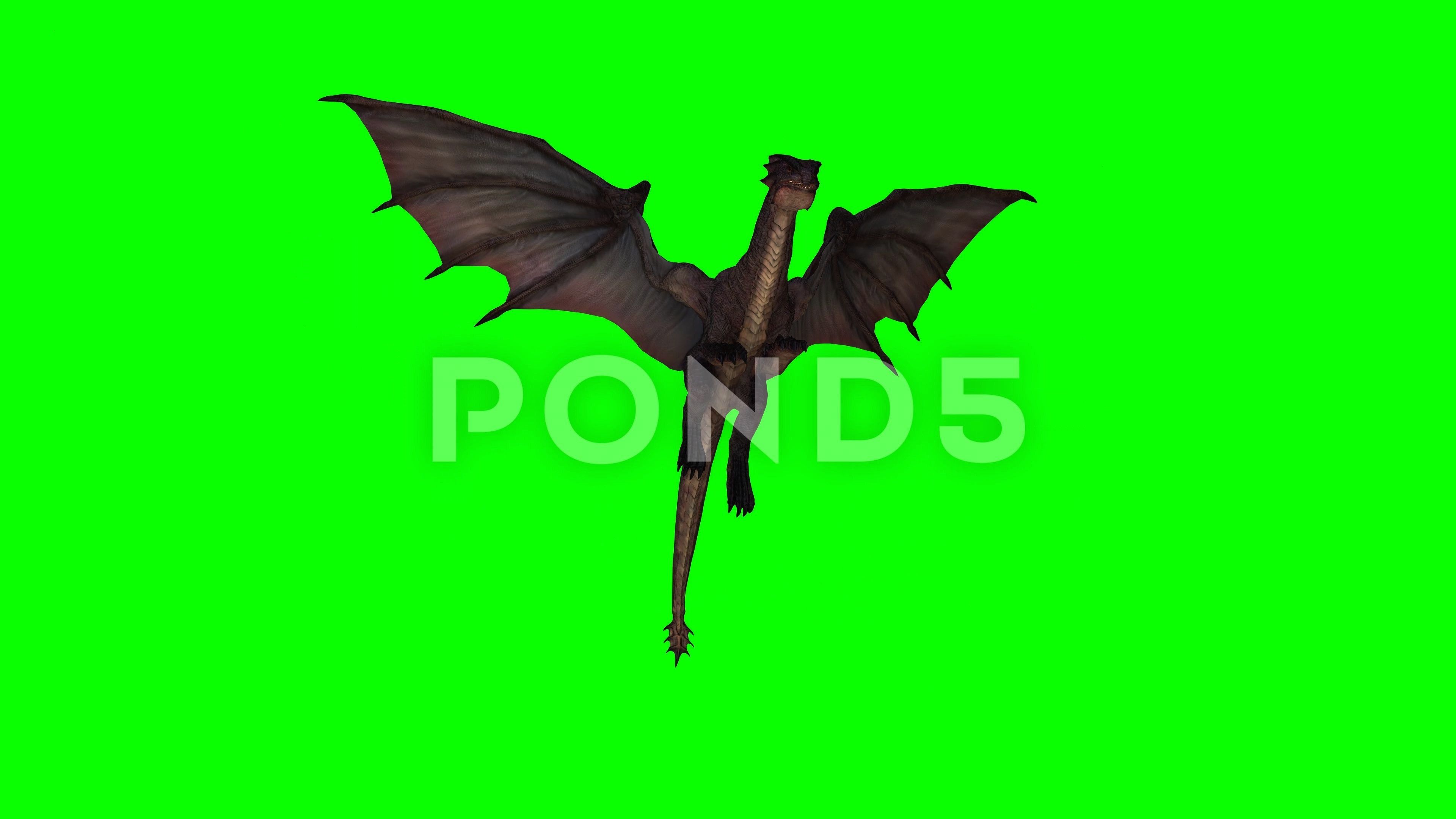 Flying Idle Animation In Green Screen Stock Footage IdleAnimation  Dragon Flying Idle Animation In Green Screen Stock Footage IdleAnimationDragonFlying Informations About...