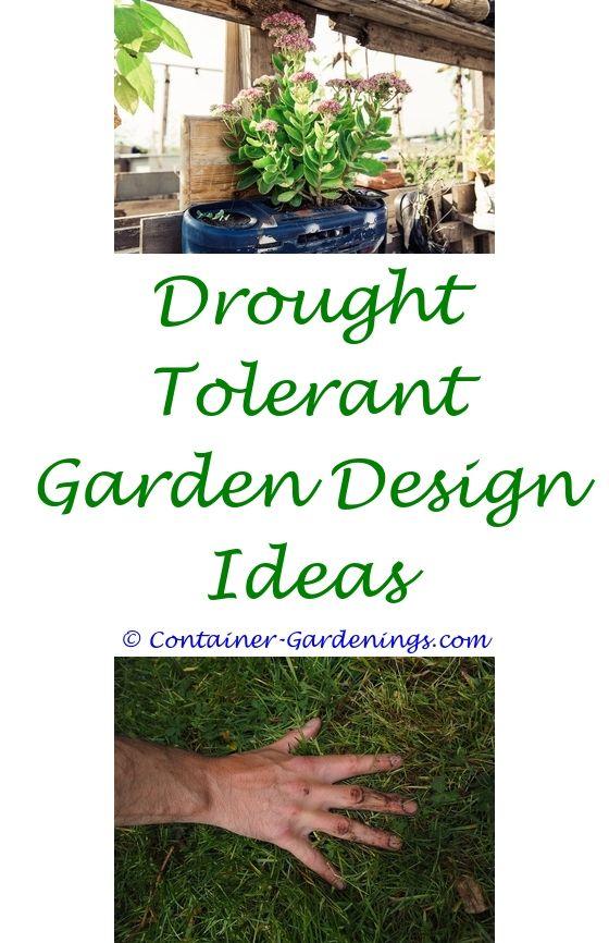 How To Start A Vegetable Garden From Scratch | Garden ideas ...