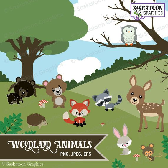Woodland Animals Clipart - Instant Download File - Digital Graphics - Cute - Crafts, Web, Parties - Commercial & Personal Use - #WA001