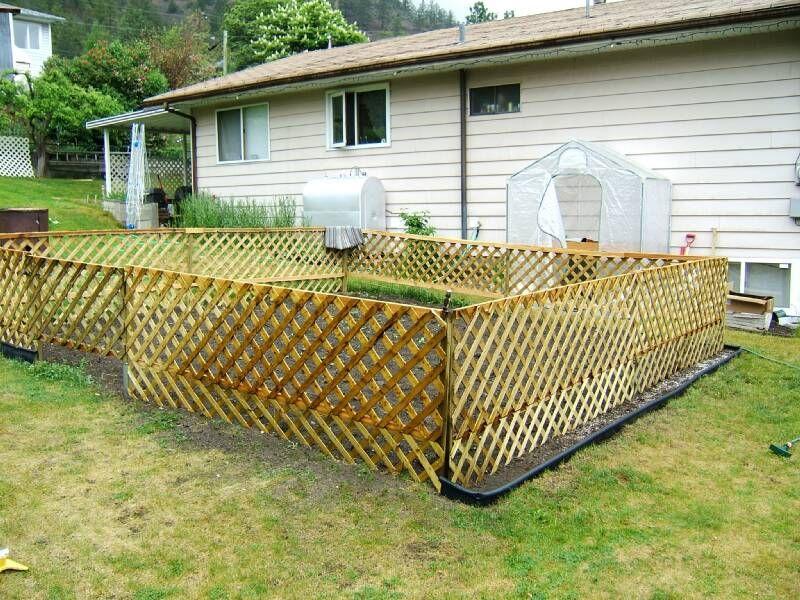 Lattice Fence Around Veggie Garden