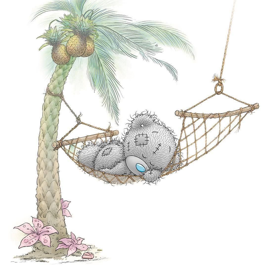 Best Relaxing In The Sun ☀️ Tatty Teddy Teddy Pictures Tatty 640 x 480