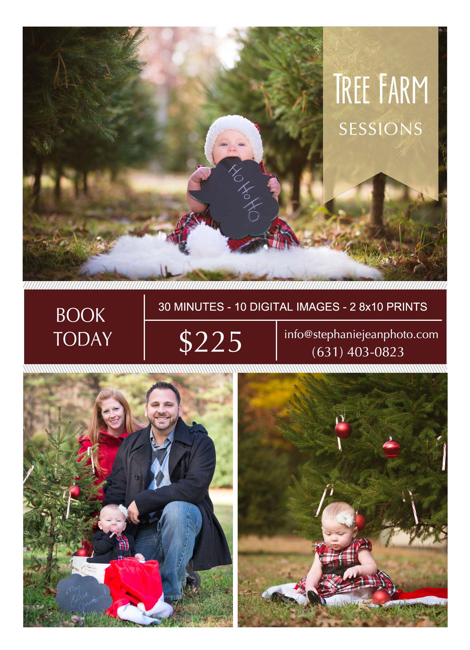 Stephanie Jean Photography Christmas Portraits Christmas Photography Christmas Photos