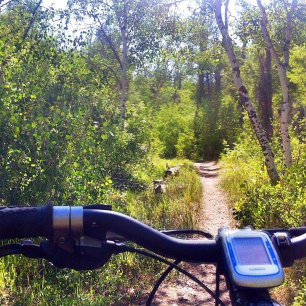 Mormon Trail through Little Emigration Canyon.