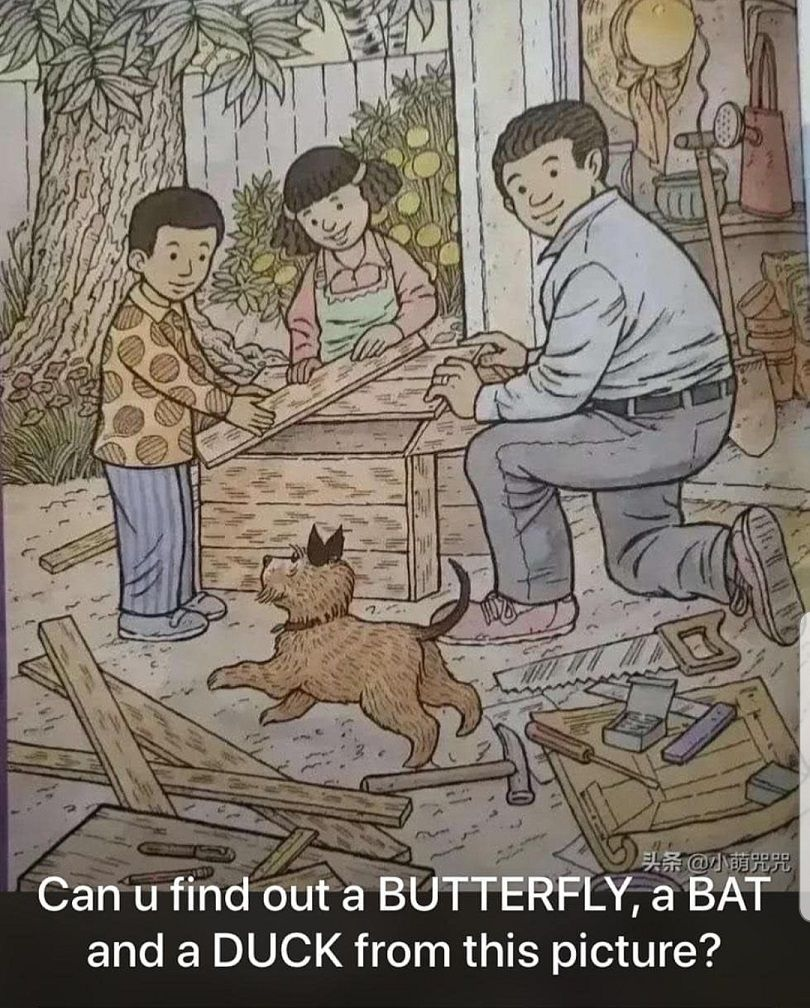 Can You Find Out a Butterfly | Bat | Duck - with A