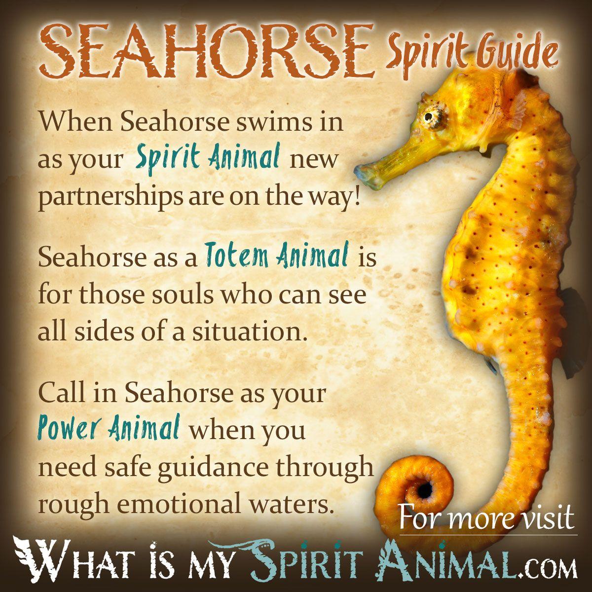 Seahorse symbolism meaning seahorses totems and power animal in depth seahorse symbolism seahorse meaning seahorse as a spirit totem power animal plus seahorse in celtic native american symbols dreams biocorpaavc Gallery
