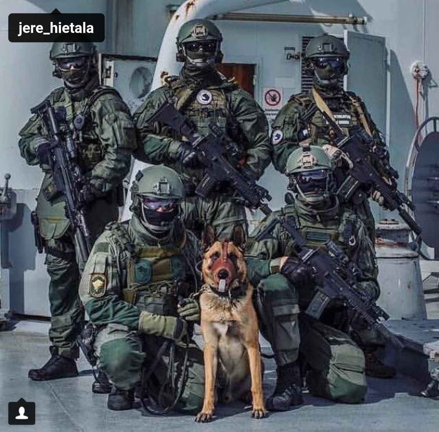 Pin On Working Dogs-Service/MWD/K9