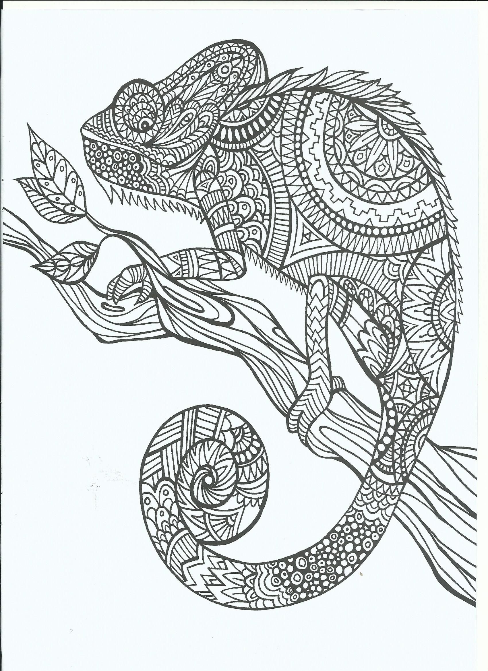 Ausmalbilder Tiere : Free Printable Coloring Pages For Adults 12 More Designs
