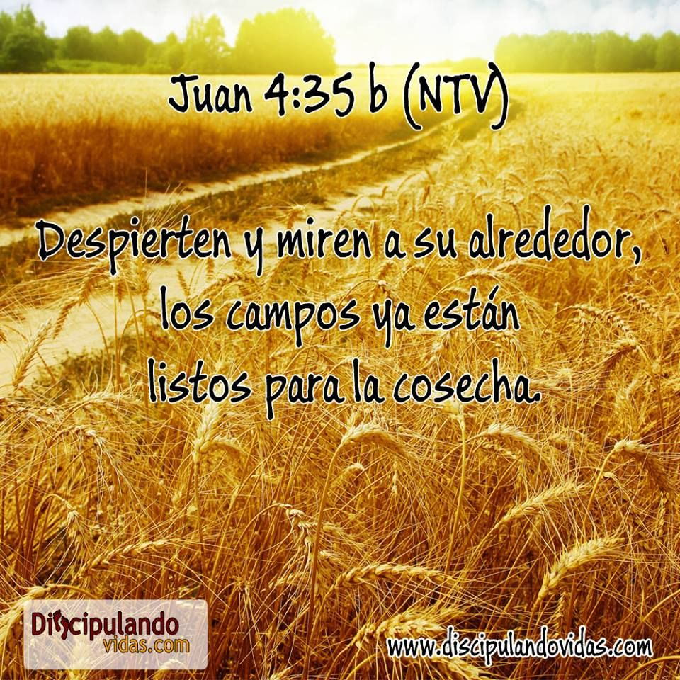 Juan 4-31 (con imágenes) | Ya desperte, De jesus, Mensajes